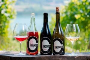 Weingut Georgium am Längsee