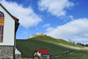 Weingut Taggenbrunn in der Region Mittelkärnten